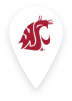 Washington State University Pin